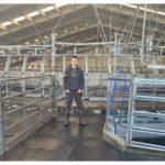 1300-cow farm