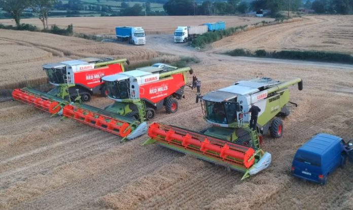VIDEO: Harvest 2019