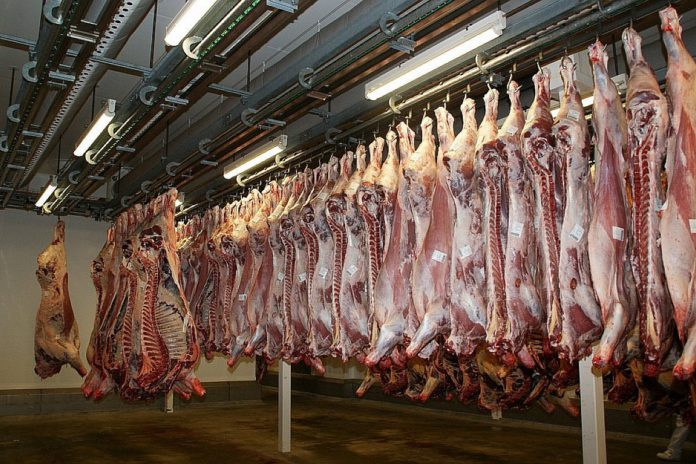 Update on beef prices in Ireland and Northern Ireland