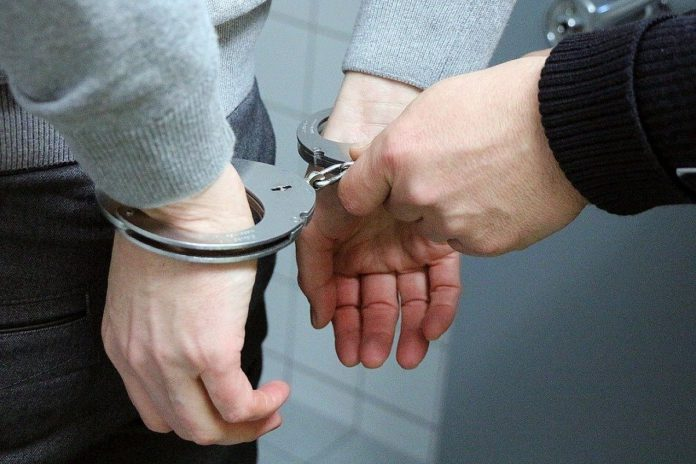 Arrest, police, sheep theft