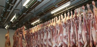 Beef prices, beef trade, beef farming