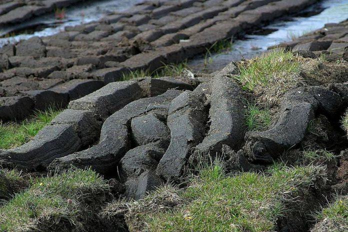 Peat, turf, Bord na Móna