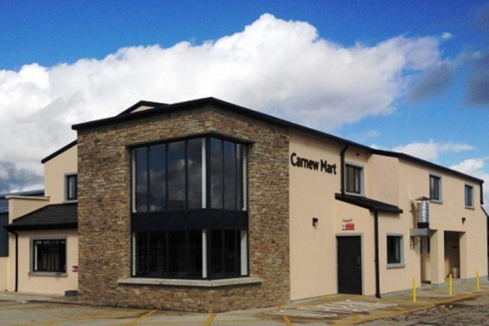 Report from cattle sale held at Carnew Mart -