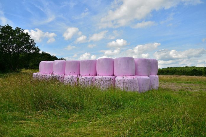Silage, silage bales, silage 2021, machinery, field, tractors, how to make better silage in 2021