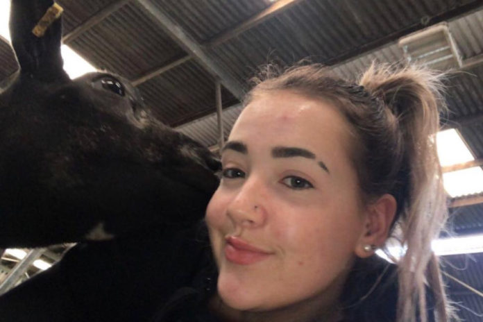 16 year old soaring to success with prize winning blue texel flock