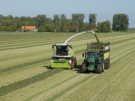 silage, farming news,