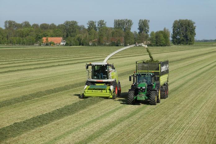 silage, farming news,