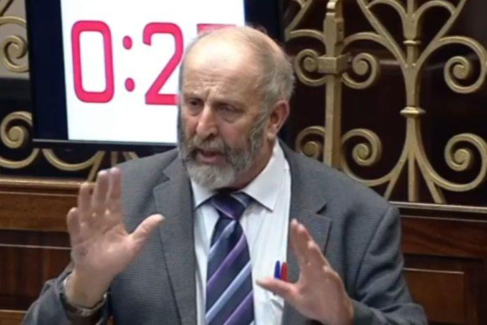 Danny Healy-Rae, politics, Healy-Rae, Dáil,