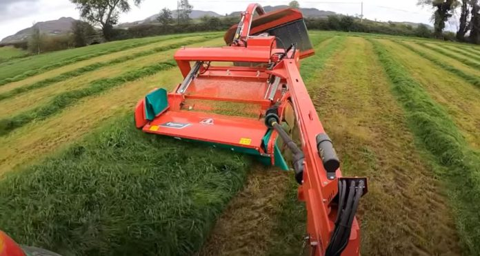 Silage 2020