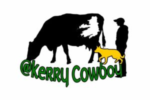 'The Kerry Cowboy', a 21-year-old dairy farmer and student-teacher, has taken TikTok by storm.