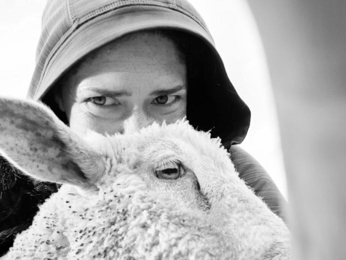 Sheep farmer Clodagh Hughes