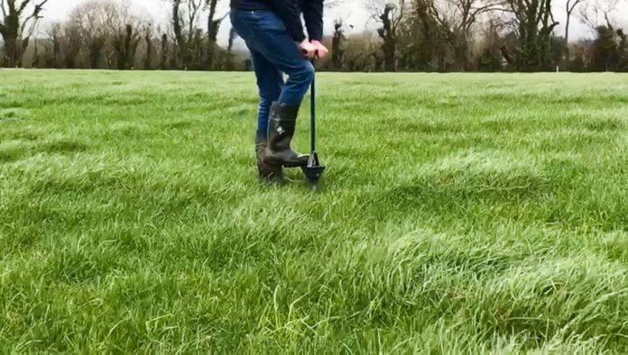 Soil sampling, grassland, grass, taking soil samples,