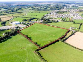 Online bidder in Abu Dhabi secures 16-acres of land in Tullamore for €195,000