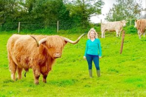 Michelle Shaughnessy, Highland cattle, Longford, cattle breeder,