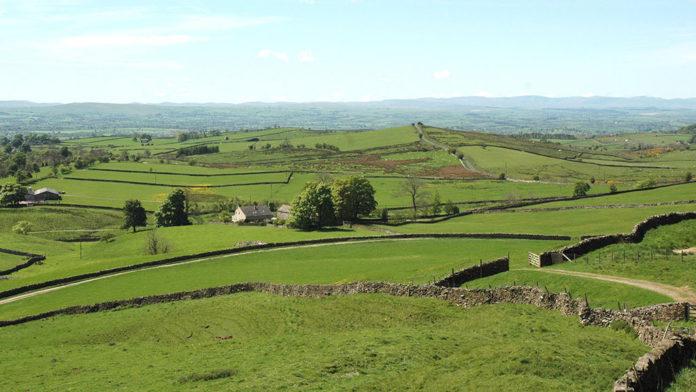 Farmland Cumbria - Dry stone Walls - countryside landscape