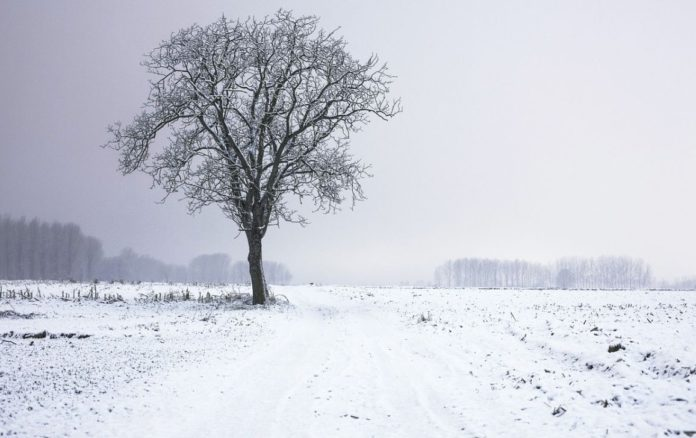 Met Éireann, weather, snow, weather forecast