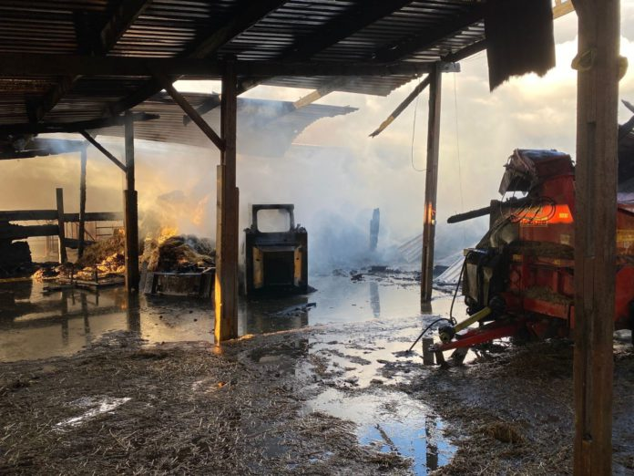 Barn fire, cows, 160 cows were evacuated to safety
