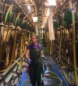 Annie McGuinness, dairy cows, dairy farming, dairy herd, parlour, farming news, dairy, agricultural news, That's Farming, Park House Farm