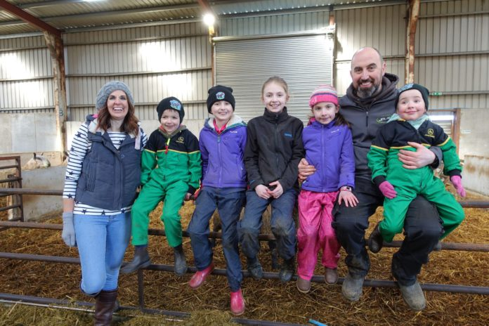Rare Breed – A Farming Year, Jalex, cattle,