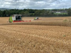 harvester, harvesting, agricultural contracting in Ireland