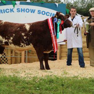 Kieran Flatley, Shorthorn cattle, Shorthorns, farming news