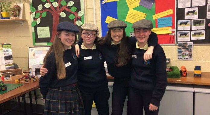 cattle, farming news, Irish Angus, school, charity calendar
