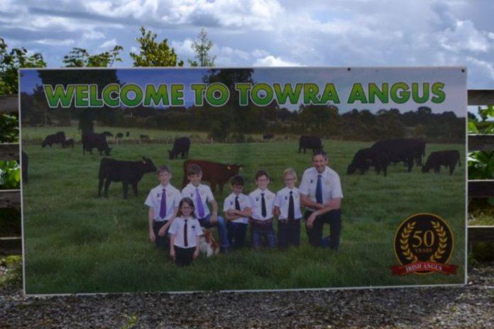 Towra Pedigrees, farm family, farming life