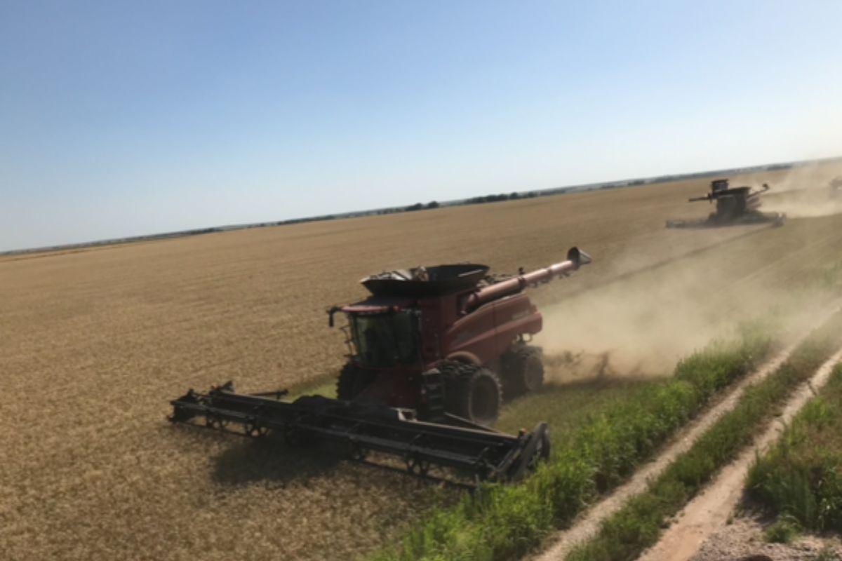 harvest, machinery, harvesting, working overseas. America, USA