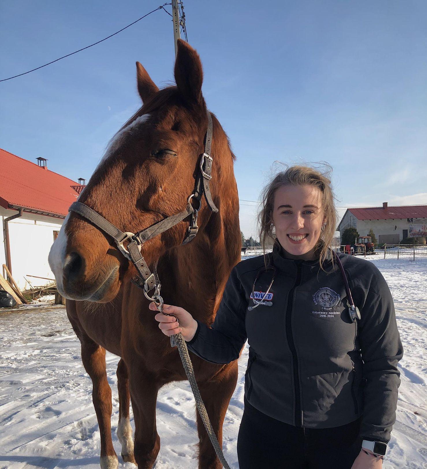 Horses, equine, Student Focus, veterinary medicine student