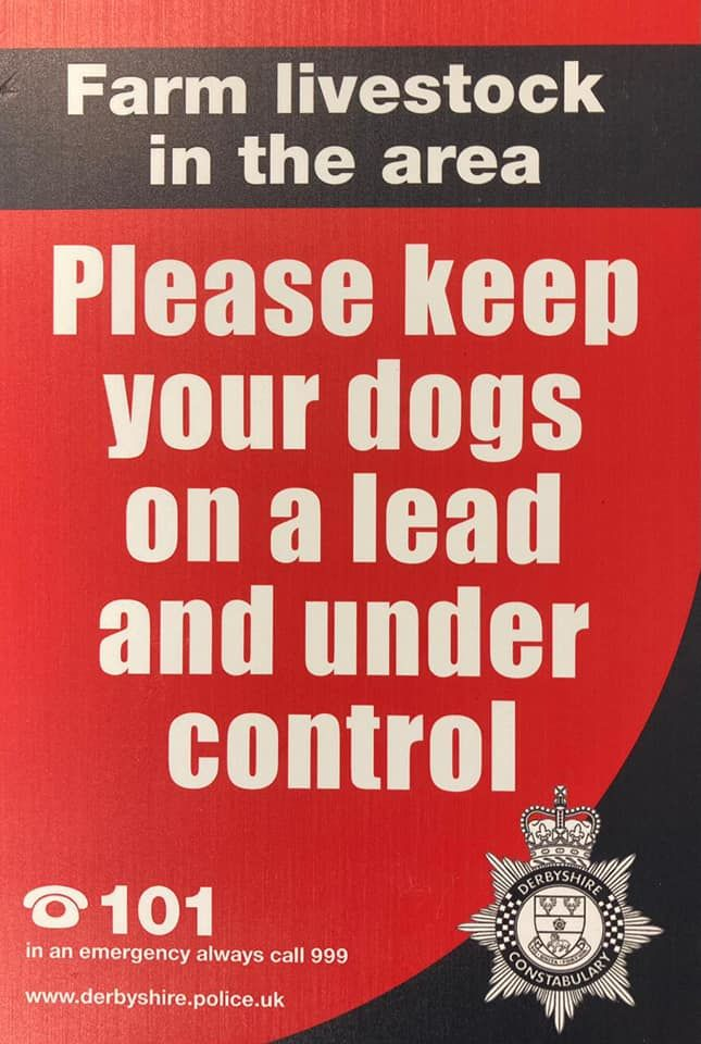 police, dogs