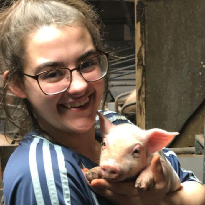 Amy Barry, pig farming in Ireland, pig farmer, farm girl, women in ag