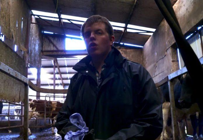 Andrew Little, Rare Breed - A Farming Year, farming, TV