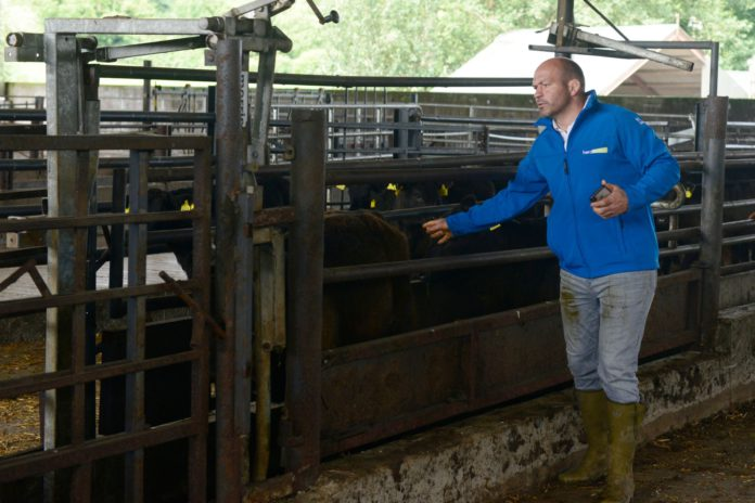 Verified by Herdwatch, Rory Best, Donedeal Farming