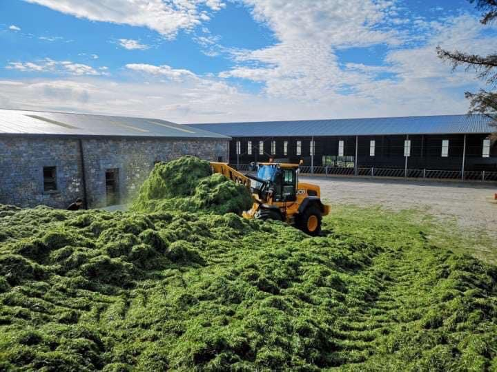 Gannon Agri Contractors, silage pit, silage, harvesting grass,