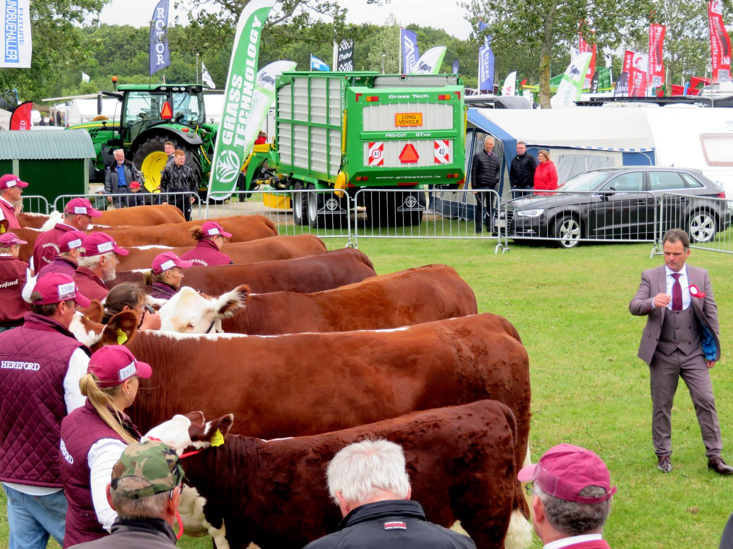 National Hereford Show Denmark, Hereford, Hereford cattle, Matthew Goulding
