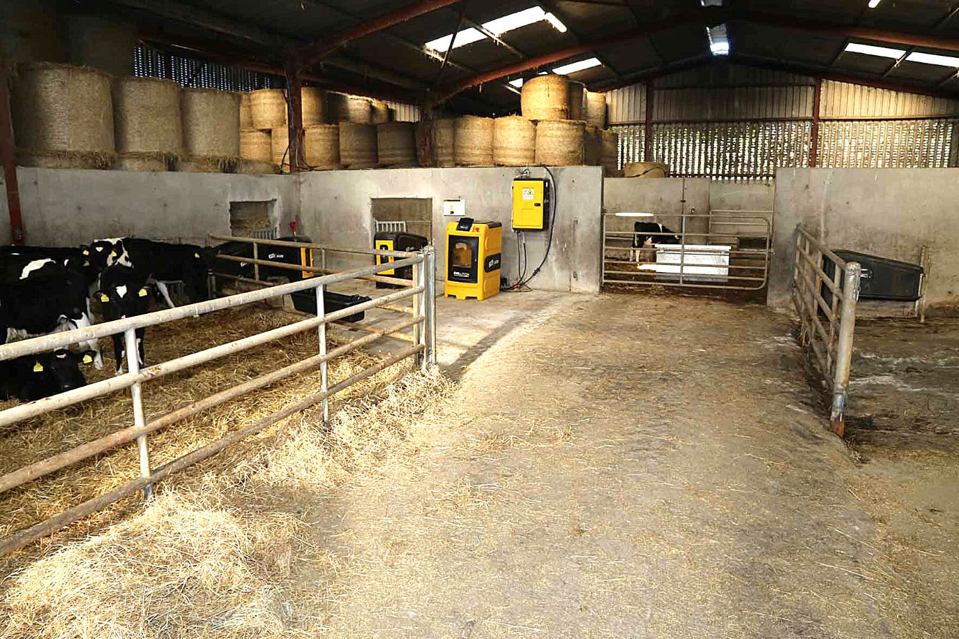Sean Nolan, JFC Agri Evolution S4 automatic calf feeder, JFC Agri, rearing calves