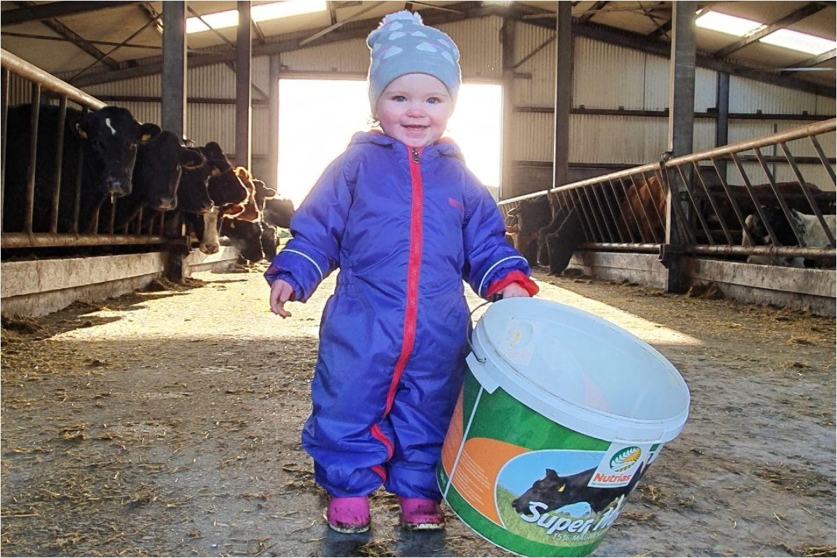 Gillian Davis, suckler farming, young farmers
