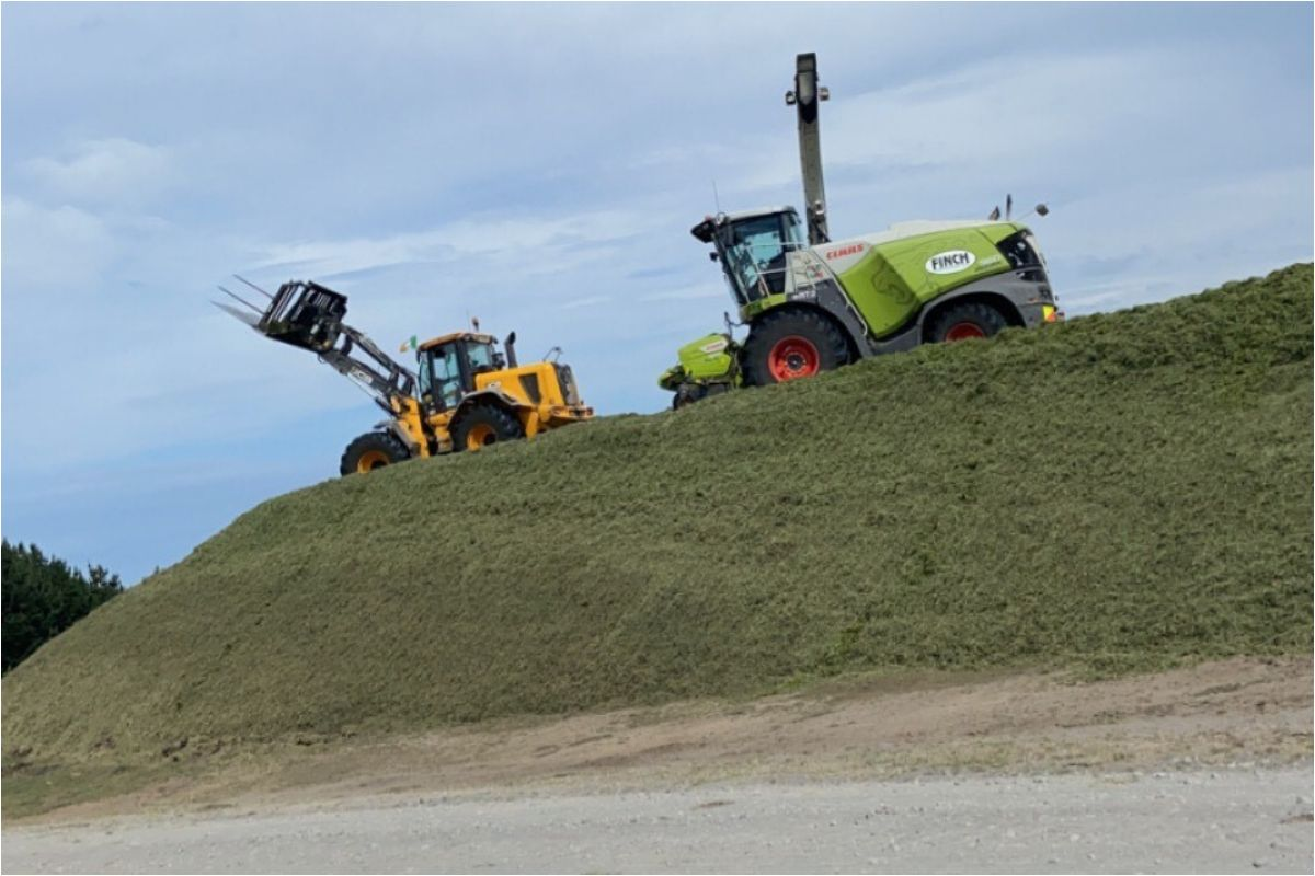 agricultural contracting in Zealand, farming in New Zealand