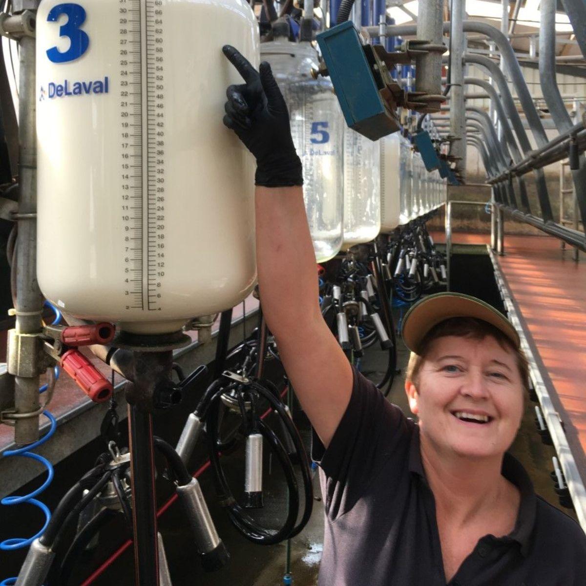Montbeliarde, Ann Fitzgerald, dairy farmer, milking parlour, DeLaval milking parlour