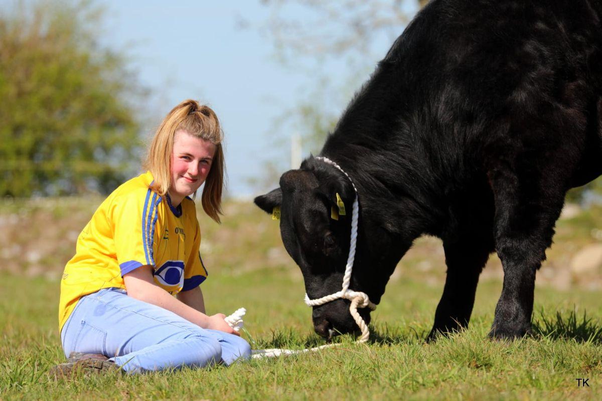 Angus cattle, farming, suckler farming, women in ag, Irish Angus