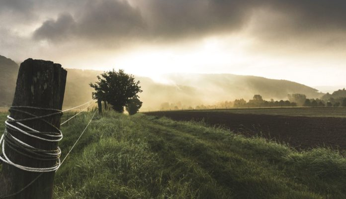 Farming, farmer, field, agriculture, land