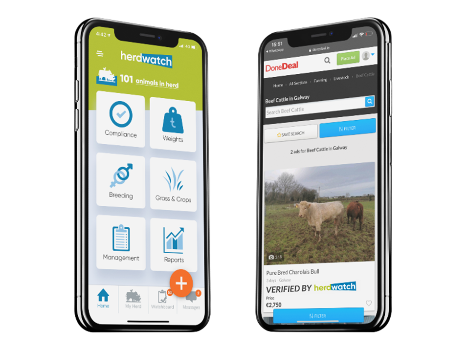 Verified by Herdwatch, buy cattle online