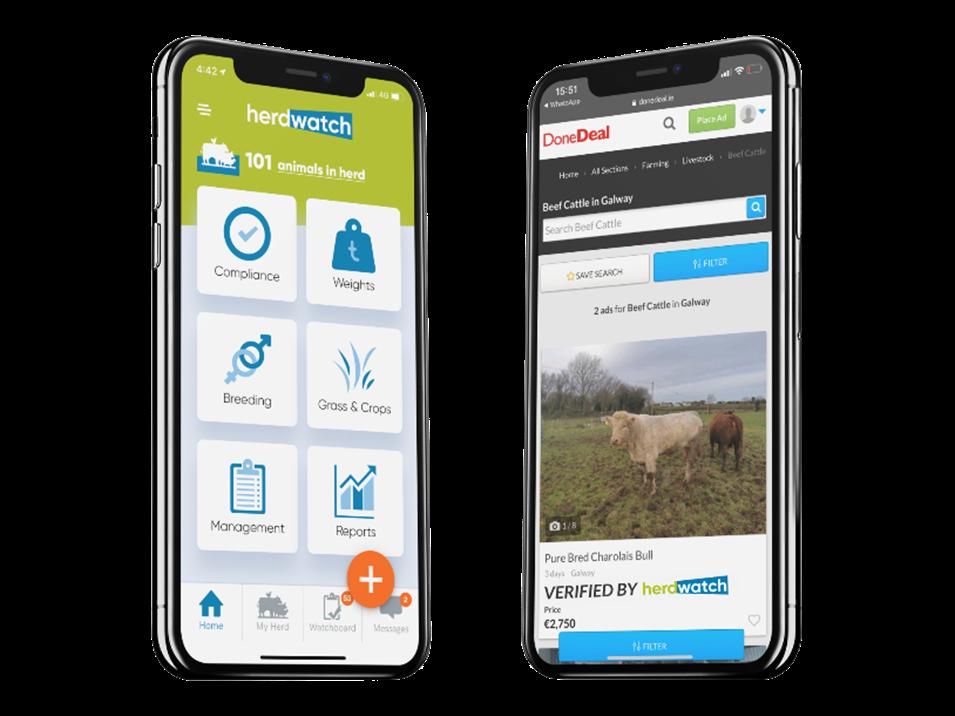 Verified by Herdwatch, buy cattle online