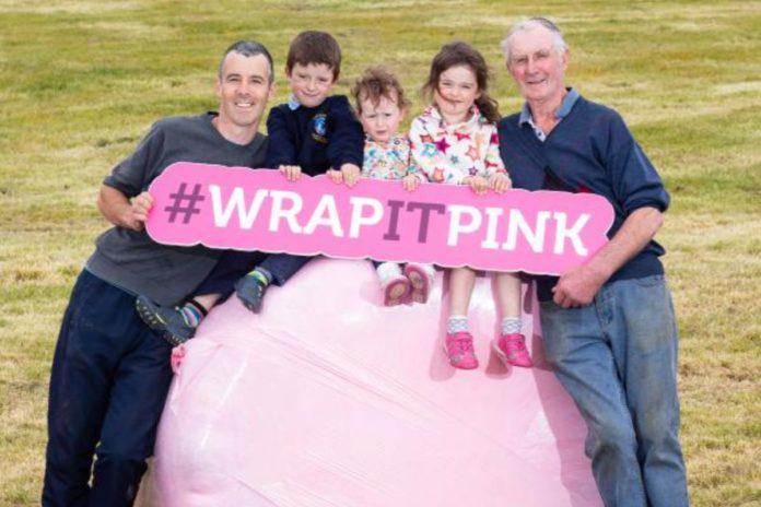 Wrap it Pink, Irish Cancer Society, fundraising
