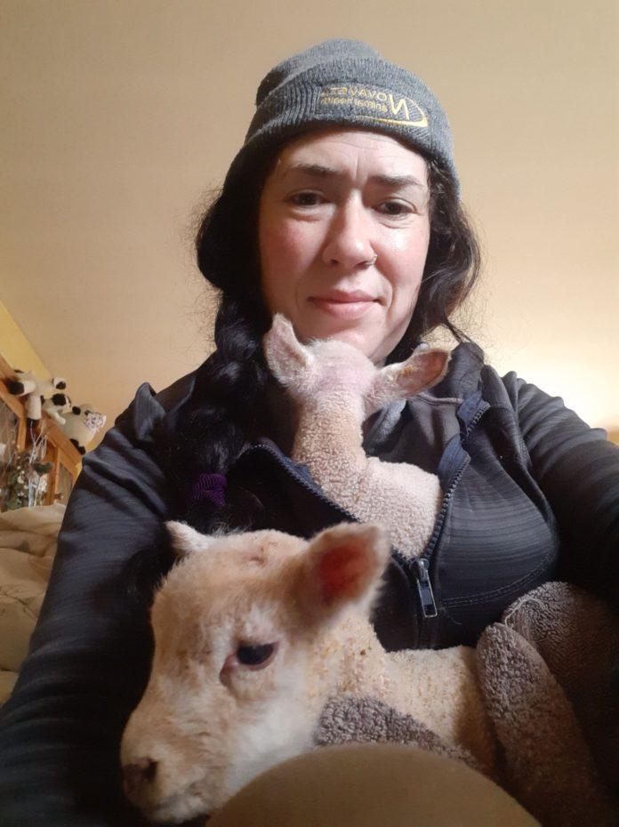 Clodagh Hughes, sheep farmer, sheep farming,