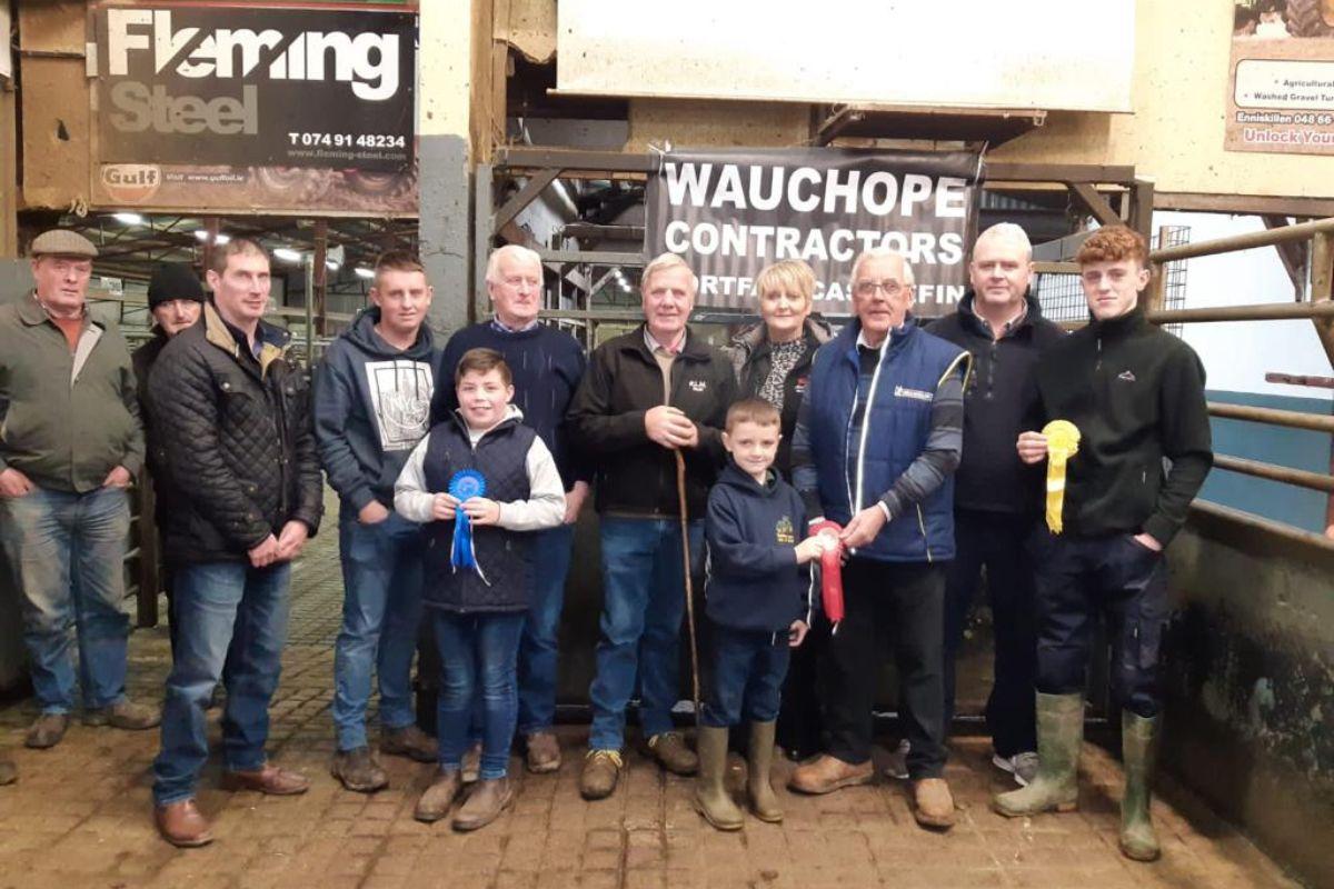 cattle mart, mart report, Raphoe Livestock Mart
