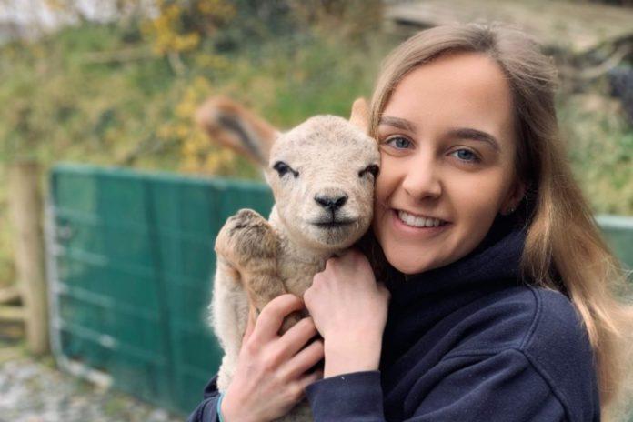 Hannah Orr, sheep farming, sheep farmer, farm girls