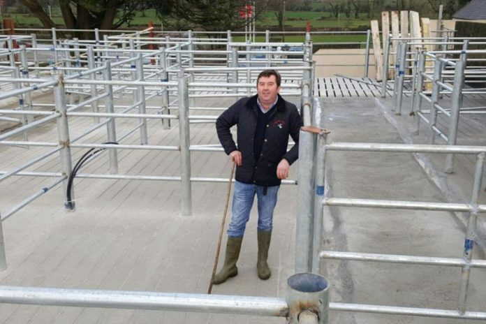 Maurice Brosnan, Gortatlea Mart, livestock marts