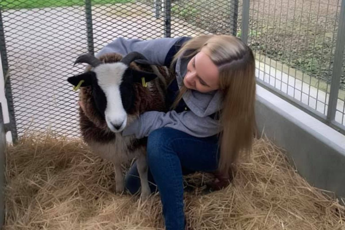 Hannah Orr, sheep farmer, sheep farming, Jacob sheep