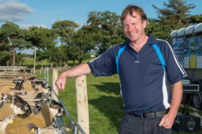 Joe Scahill, sheep farming, sheep farmer